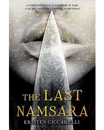 THE LAST NAMSARA HARDCOVER by Ciccarelli