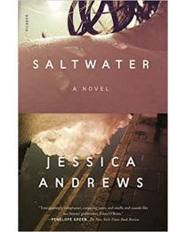 Saltwater: A Novel PAPERBACK – 2021 by Jessica Andrews