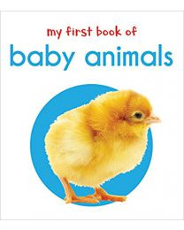 My First Book Of Baby Animals : First Board Book BOARD BOOK 2018  Wonder House Books